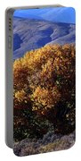 Fall Foliage And Hills, Carson City Portable Battery Charger