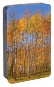 Fall Foliage Color Vertical Image Portable Battery Charger