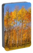 Fall Foliage Color Vertical Image Orton Portable Battery Charger