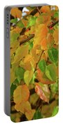 Fall Foliage II Portable Battery Charger