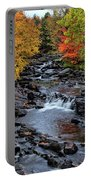 Fall Foliage In Dickinson, Ny Portable Battery Charger