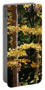 Fall Forest 1 Portable Battery Charger