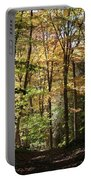 Fall Forest 2 Portable Battery Charger
