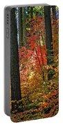 Fall Forest Splendor Portable Battery Charger