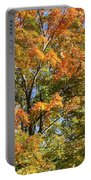 Fall Gradient Portable Battery Charger