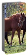 Horses Fall Grazing Portable Battery Charger