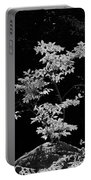 Fall Illumination In B/w Portable Battery Charger