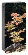 Fall Illumination Portable Battery Charger