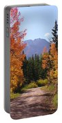 Fall In Colorado Portable Battery Charger