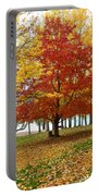 Fall In Kaloya Park 5 Portable Battery Charger