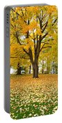 Fall In Kaloya Park 7 Portable Battery Charger