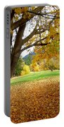 Fall In Kaloya Park 8 Portable Battery Charger