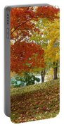 Fall In Kaloya Park 9 Portable Battery Charger