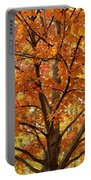Fall In Kayloya Park 2 Portable Battery Charger