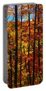 Fall In Ontario Canada Portable Battery Charger
