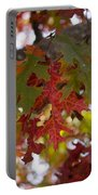 Fall In Virginia Portable Battery Charger