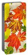 Fall Leaves Pattern Portable Battery Charger