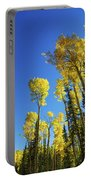 Fall Light Portable Battery Charger