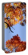 Fall Oak Leaves Up Above Portable Battery Charger