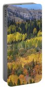 Fall On The Greys River Portable Battery Charger
