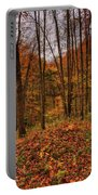 Fall On The Ice Age Trail Portable Battery Charger