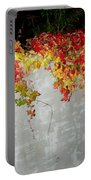Fall On The Wall Portable Battery Charger