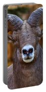 Fall Ram Portable Battery Charger