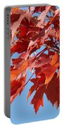 Fall Red Orange Leaves Blue Sky Baslee Troutman Portable Battery Charger