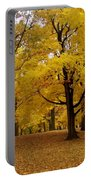 Fall Series 5 Portable Battery Charger