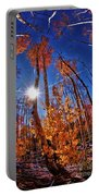Fall Sun And Trees Portable Battery Charger