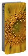Fall Sunflower Avila, Ca Portable Battery Charger