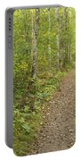 Fall Trail Scene 40 Portable Battery Charger