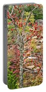 Fall Tree With Intense Colors Portable Battery Charger