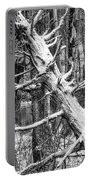 Fallen Tree And Snow Portable Battery Charger