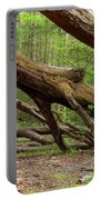 Fallen Trees Portable Battery Charger