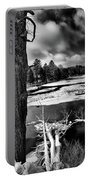 Fallen Trees In The Moose River Portable Battery Charger