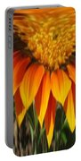 Falling Fire Portable Battery Charger
