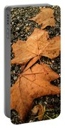 Falling Leafs Portable Battery Charger