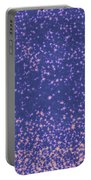 Falling Star Portable Battery Charger