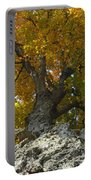 Falling Tree Portable Battery Charger