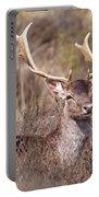 Fallow Deer Buck Portable Battery Charger