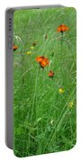 Fallow Field Portable Battery Charger