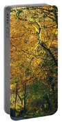 Falls Gold Portable Battery Charger
