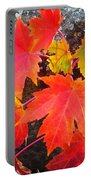 Falltime ...  Portable Battery Charger