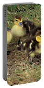 Family Portrait Portable Battery Charger by Angelina Vick