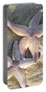 Family Starfish 2 Portable Battery Charger