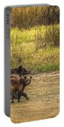 Family Walk At Dawn Portable Battery Charger