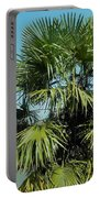 Fan Palm Tree Portable Battery Charger