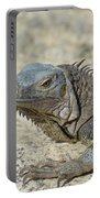 Fantastic Gray Iguana With Spines Along His Back Portable Battery Charger