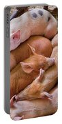 Farm - Pig - Five Little Piggies And A Chicken  Portable Battery Charger